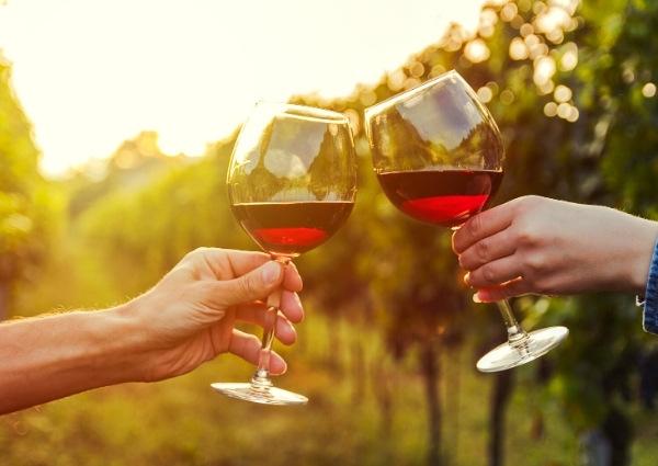investir domaine viticole